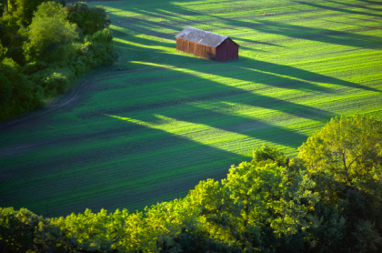 Alex MacLean,'Tobbaco Barn in Field with Long Shadows' from 'Growing' series